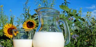 Mleko podczas diety